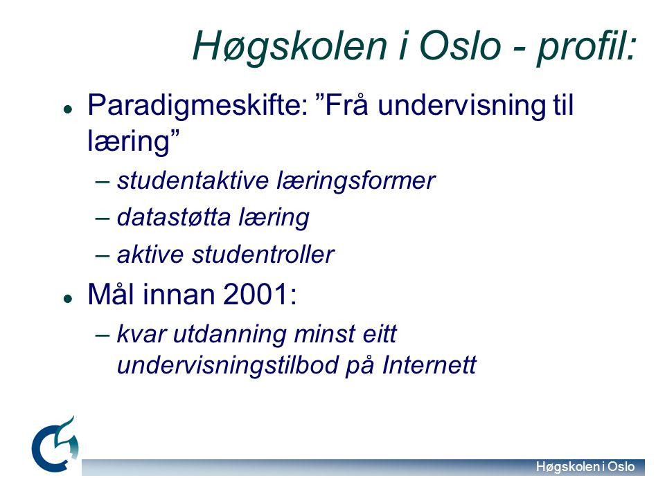 Høgskolen i Oslo Erfaringar generelt Engasjerte, arbeidsame studentar: –Oppdagande læring –Undersøkjande tilnærming –Jamnt arbeid undervegs –Oppdagande læring Føresetnad: –Førehandsplanlegging –Utarbeiding av gode oppgåver –Gruppestruktur som drivkraft
