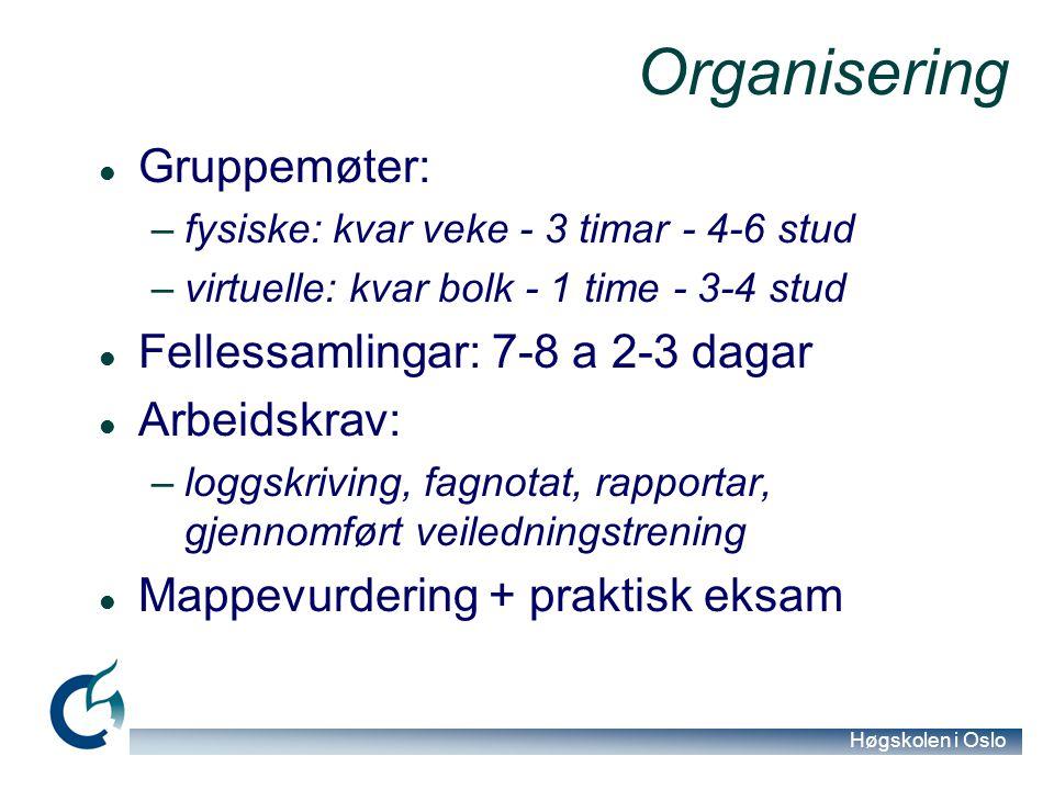 Høgskolen i Oslo Organisering Gruppemøter: –fysiske: kvar veke - 3 timar - 4-6 stud –virtuelle: kvar bolk - 1 time - 3-4 stud Fellessamlingar: 7-8 a 2