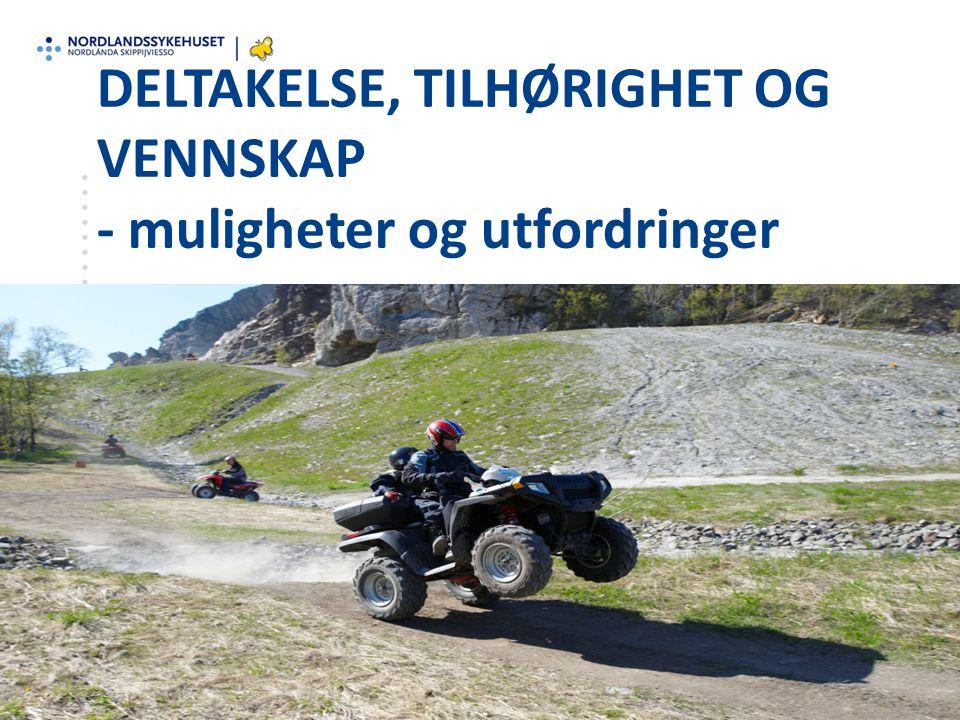 Prosjektrapport www.nlsh.no/habiliteringsteamet Felles ansvar for ungdom som sliter Prosjektrapport KIS-materiell: http://helsekompetanse.no/kishttp://helsekompetanse.no/kis