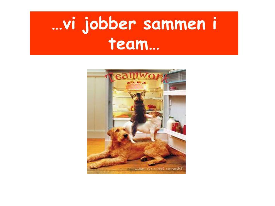 …vi jobber sammen i team…