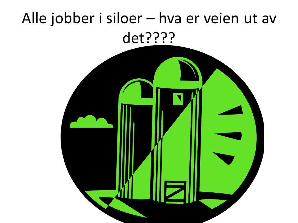 Alle jobber i siloer – hva er veien ut av det????