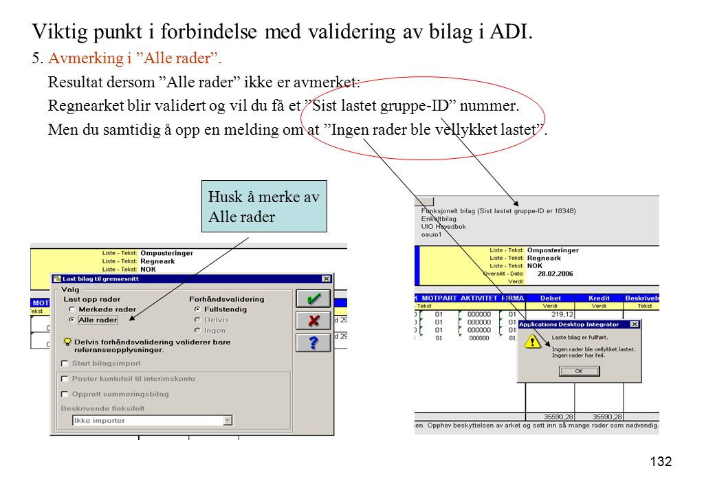 """132 Viktig punkt i forbindelse med validering av bilag i ADI. 5. Avmerking i """"Alle rader"""". Resultat dersom """"Alle rader"""" ikke er avmerket: Regnearket b"""