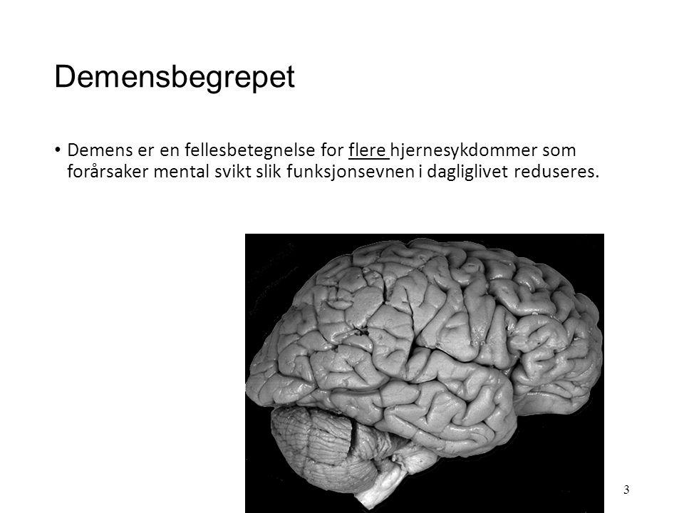 Demenssykdommer Demensbegrepet Ulike demenssykdommer Forekomst av demens Symptomer ved demens Symptomer og sykdomsutvikling ved Alzheimers sykdom Årsa