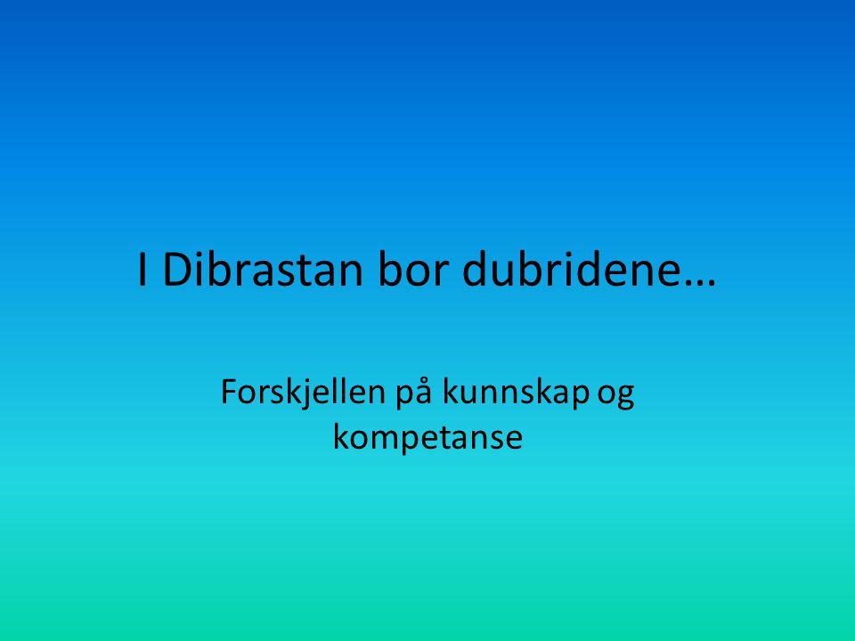 I Dibrastan bor dubridene… Forskjellen på kunnskap og kompetanse