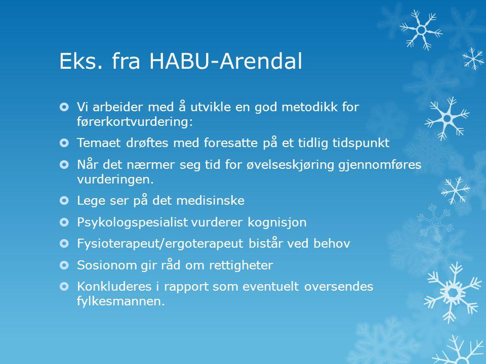 Eks. fra HABU-Arendal  Vi arbeider med å utvikle en god metodikk for førerkortvurdering:  Temaet drøftes med foresatte på et tidlig tidspunkt  Når