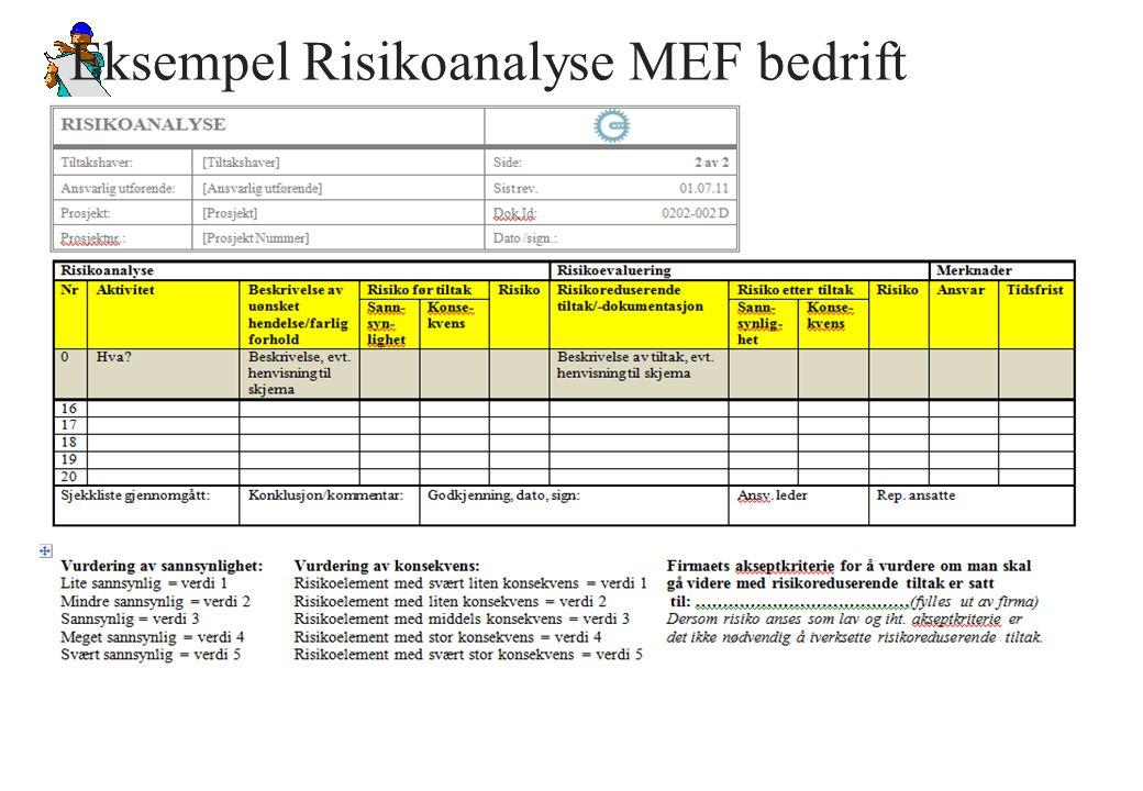Eksempel Risikoanalyse MEF bedrift