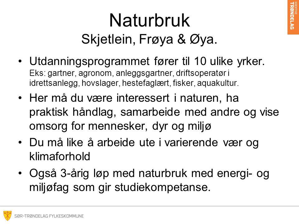 Naturbruk Skjetlein, Frøya & Øya. Utdanningsprogrammet fører til 10 ulike yrker.