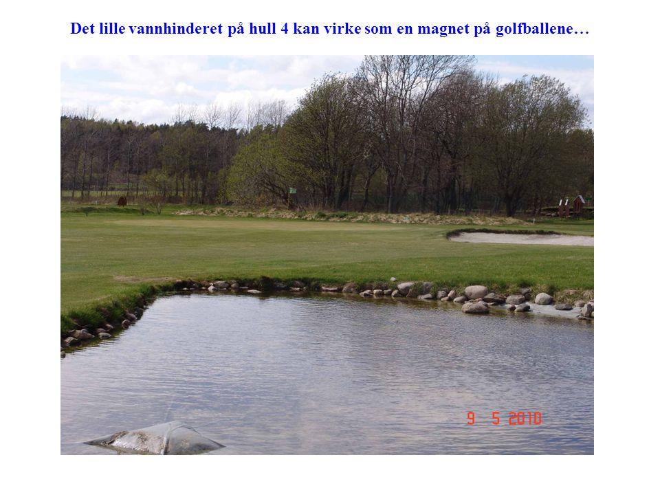 Det lille vannhinderet på hull 4 kan virke som en magnet på golfballene…