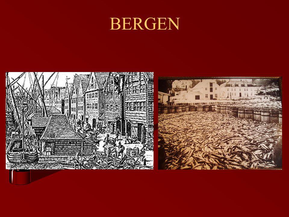 SPRÅKET.IVAR AASEN. Var autodidakt. Oppdaget likheten mellom bygdedialektene og norrønt språk.