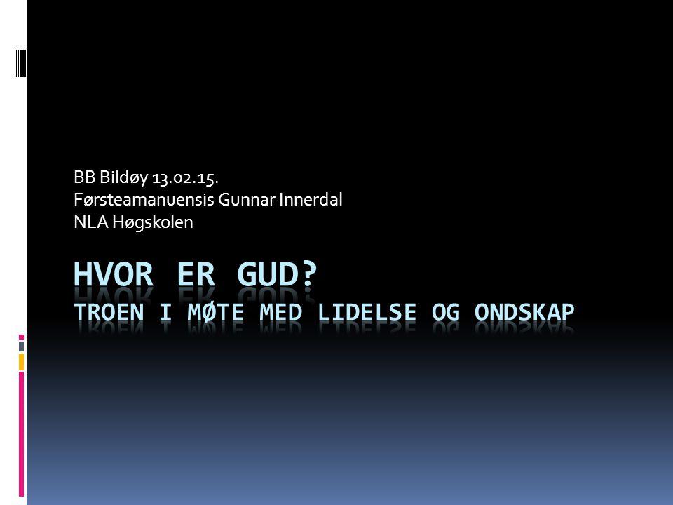 BB Bildøy 13.02.15. Førsteamanuensis Gunnar Innerdal NLA Høgskolen