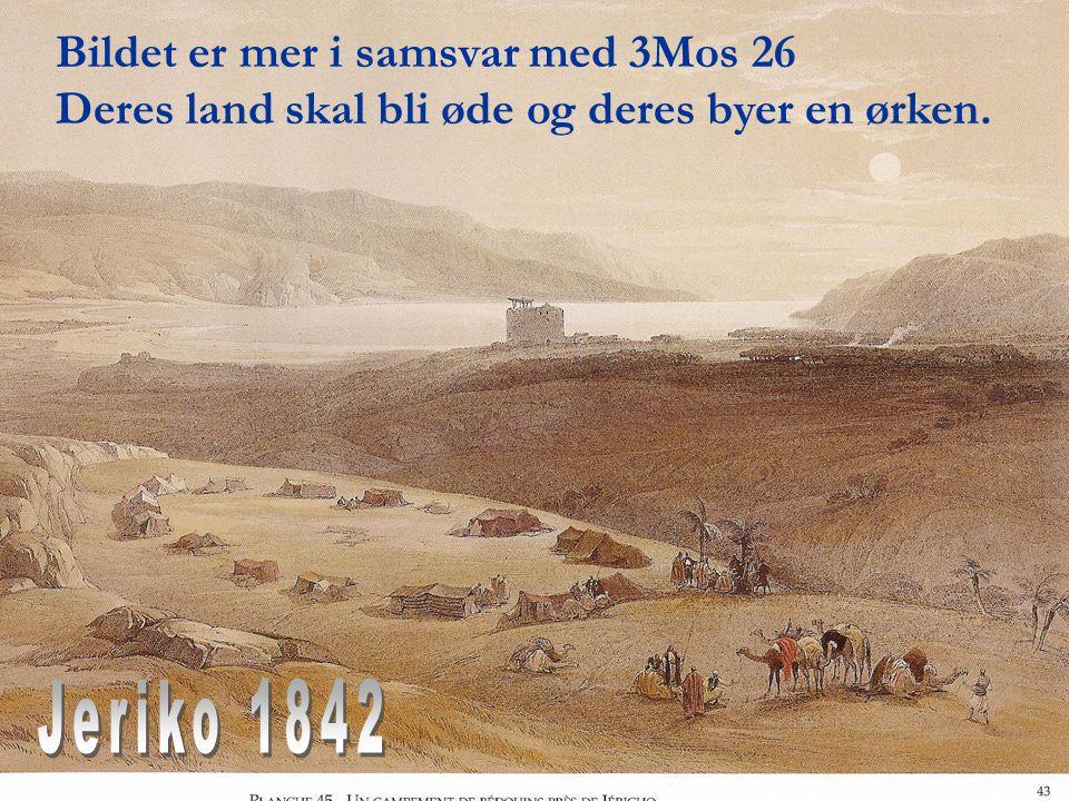 Bildet er mer i samsvar med 3Mos 26 Deres land skal bli øde og deres byer en ørken.