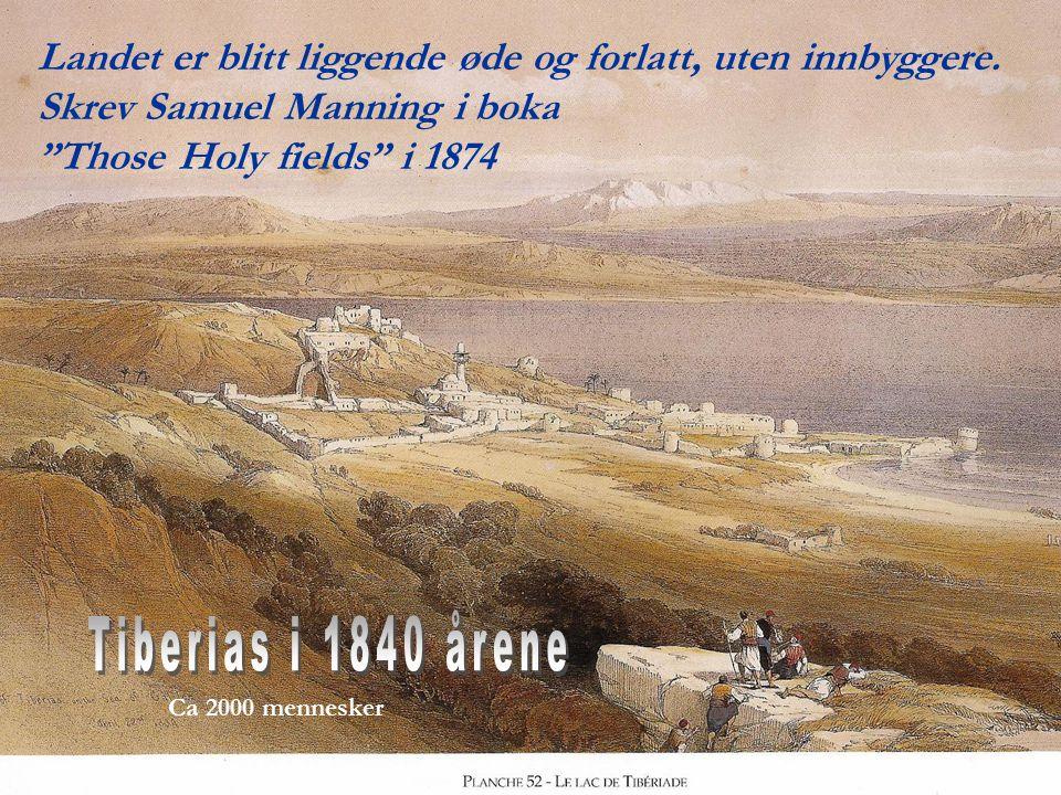 """Landet er blitt liggende øde og forlatt, uten innbyggere. Skrev Samuel Manning i boka """"Those Holy fields"""" i 1874"""