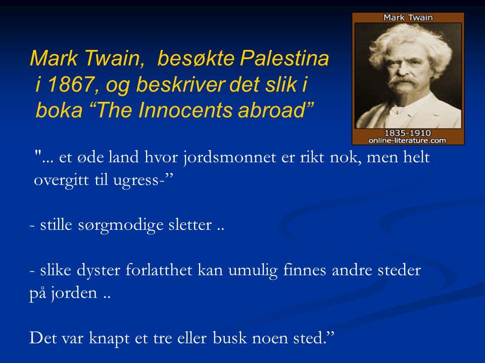 "Mark Twain, besøkte Palestina i 1867, og beskriver det slik i boka ""The Innocents abroad"""