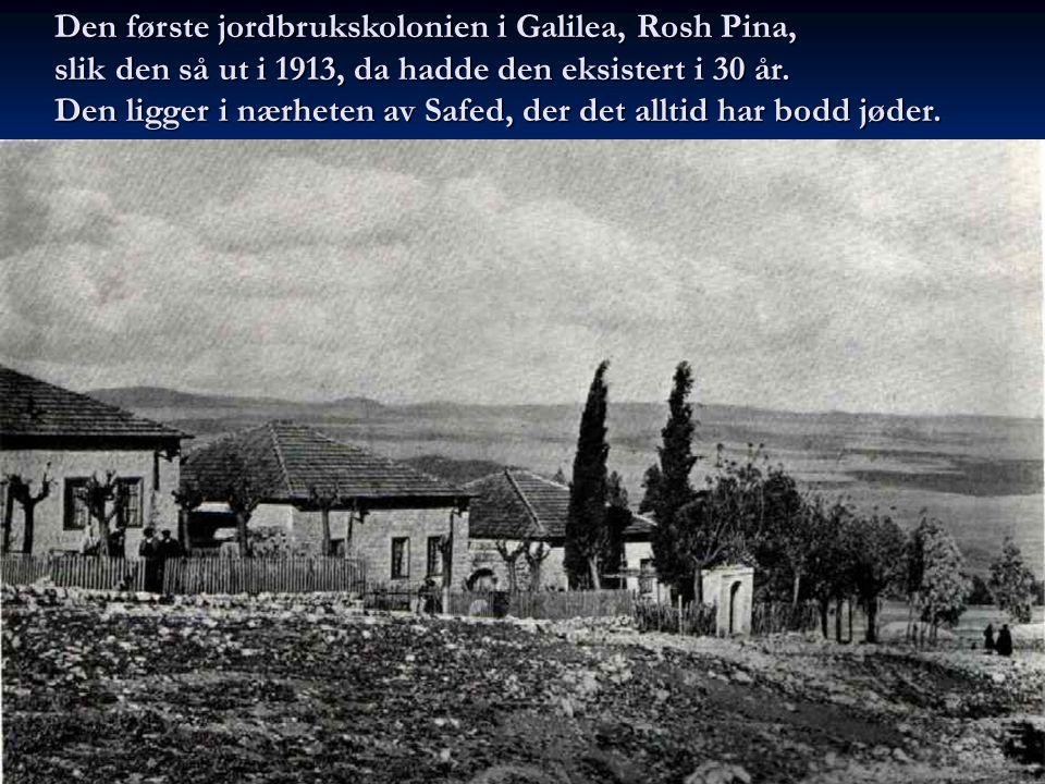 Den første jordbrukskolonien i Galilea, Rosh Pina, slik den så ut i 1913, da hadde den eksistert i 30 år. Den ligger i nærheten av Safed, der det allt