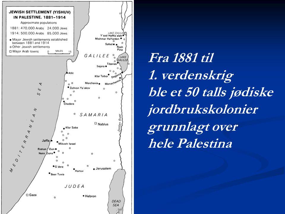 Fra 1881 til 1. verdenskrig ble et 50 talls jødiske jordbrukskolonier grunnlagt over hele Palestina