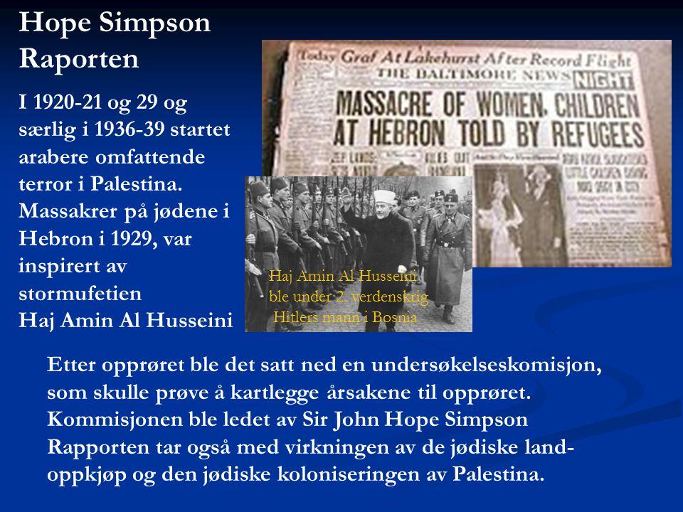 Hope Simpson Raporten I 1920-21 og 29 og særlig i 1936-39 startet arabere omfattende terror i Palestina. Massakrer på jødene i Hebron i 1929, var insp