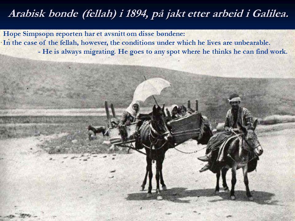 Arabisk bonde (fellah) i 1894, på jakt etter arbeid i Galilea. Hope Simpsopn reporten har et avsnitt om disse bøndene: In the case of the fellah, howe