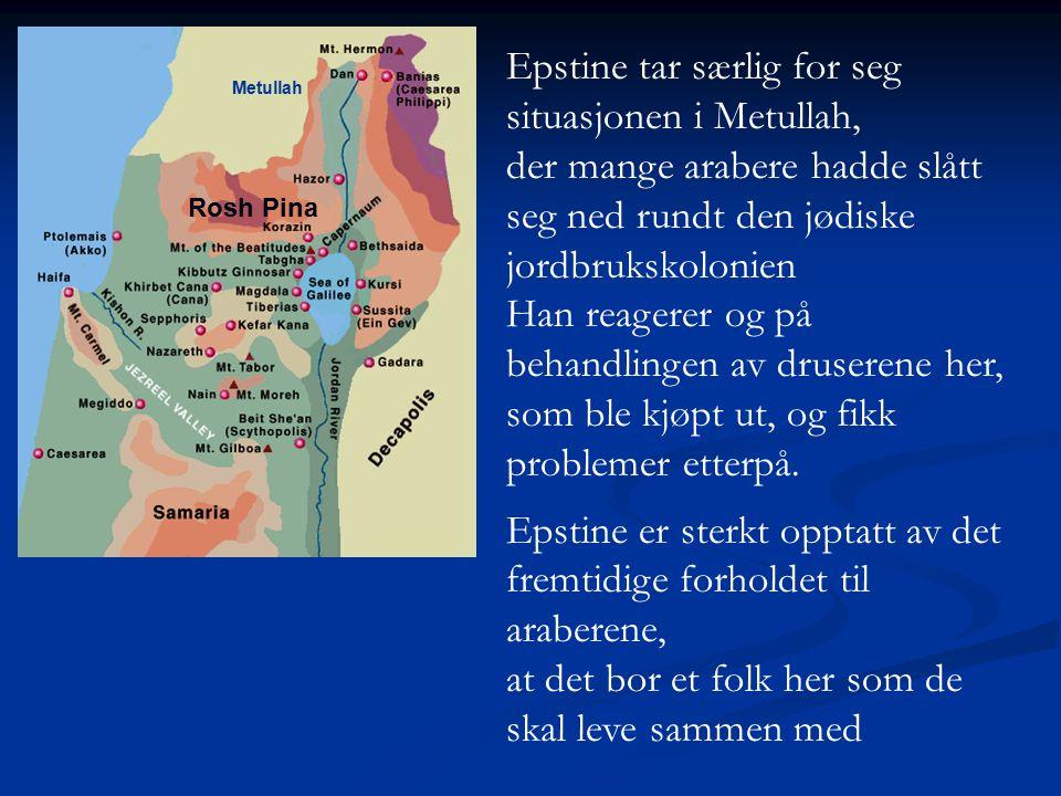 Metullah Epstine tar særlig for seg situasjonen i Metullah, der mange arabere hadde slått seg ned rundt den jødiske jordbrukskolonien Han reagerer og
