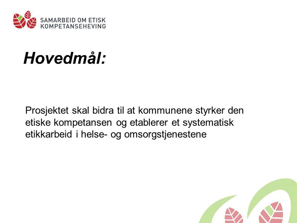 Alle fylker representert blant deltakerkommunene Alle de største kommunene er med Vest- Agder: Songdalen, Vennesla, Kvinesdal, Flekkefjord, Åseral, Kristiansand, Audnedal, Lindesnes, Lyngdal, Sirdal, Mandal Totalt 241 kommuner deltar