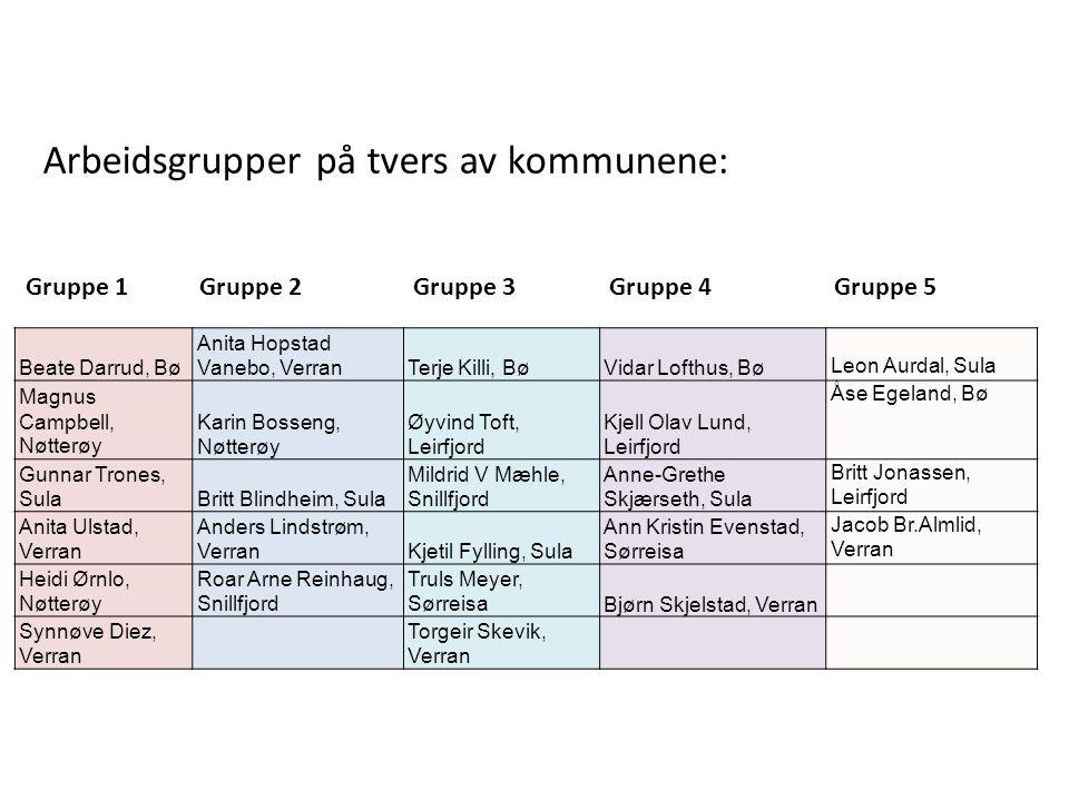 Gruppe 1 Gruppe 2 Gruppe 3 Gruppe 4 Gruppe 5 Arbeidsgrupper på tvers av kommunene: Beate Darrud, Bø Anita Hopstad Vanebo, VerranTerje Killi, BøVidar L