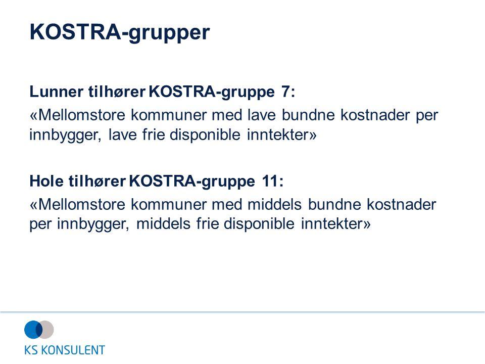 KOSTRA-grupper Lunner tilhører KOSTRA-gruppe 7: «Mellomstore kommuner med lave bundne kostnader per innbygger, lave frie disponible inntekter» Hole ti