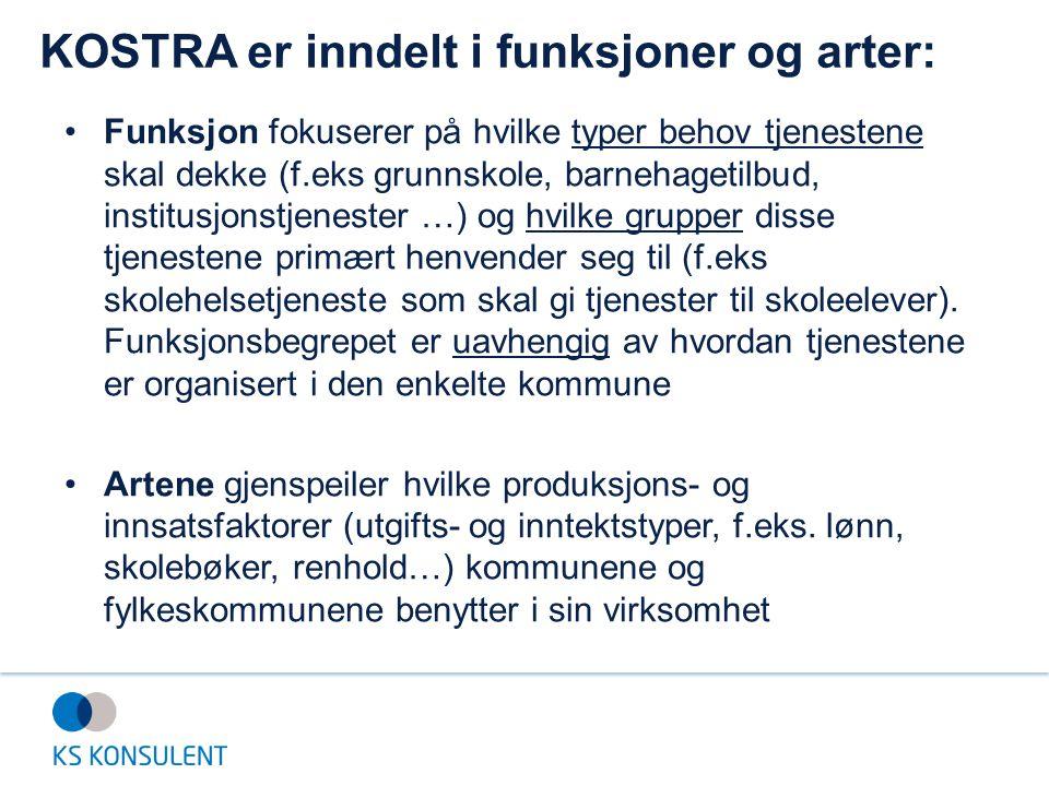 Kommunevis refleksjon: Innrapportering av KOSTRA-data: 1.Hvordan kvalitetssikrer vi regnskapstallene.