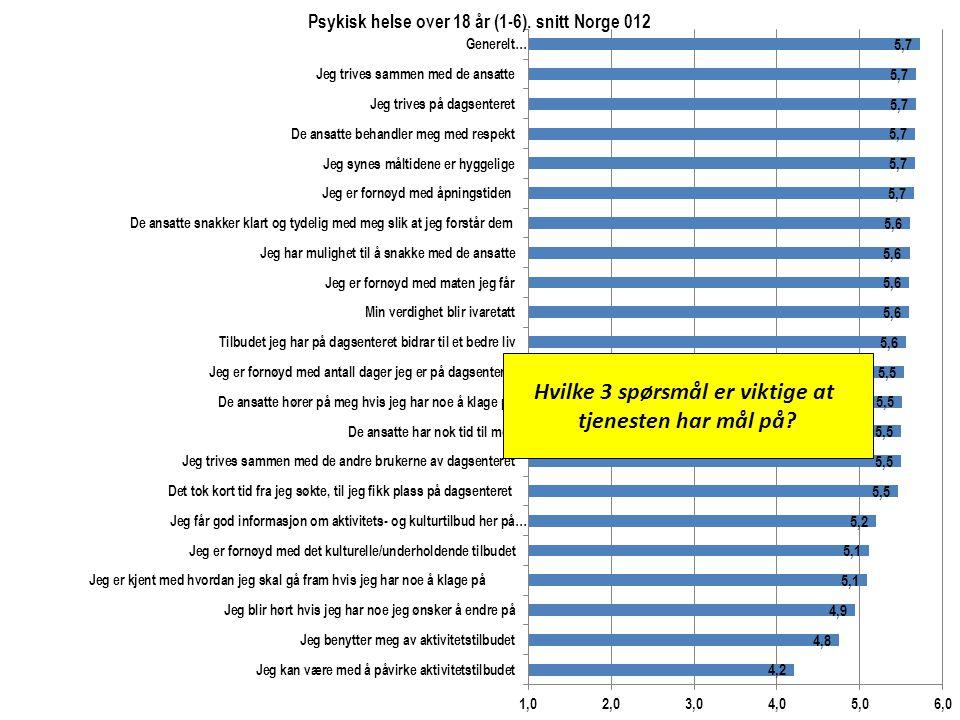 Hvilke 3 spørsmål er viktige at tjenesten har mål på?