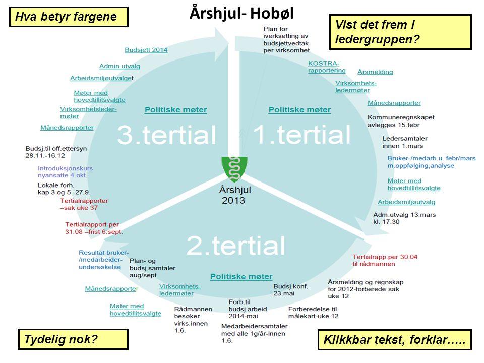 Årshjul- Hobøl Hva betyr fargene Tydelig nok? Vist det frem i ledergruppen? Klikkbar tekst, forklar…..