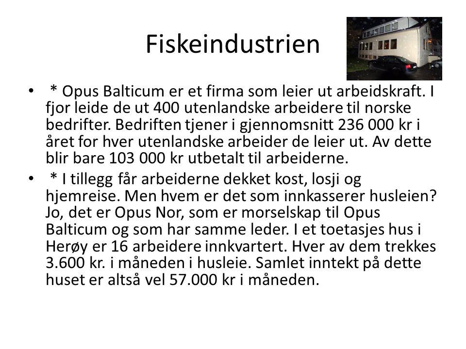 Fiskeindustrien * Opus Balticum er et firma som leier ut arbeidskraft.