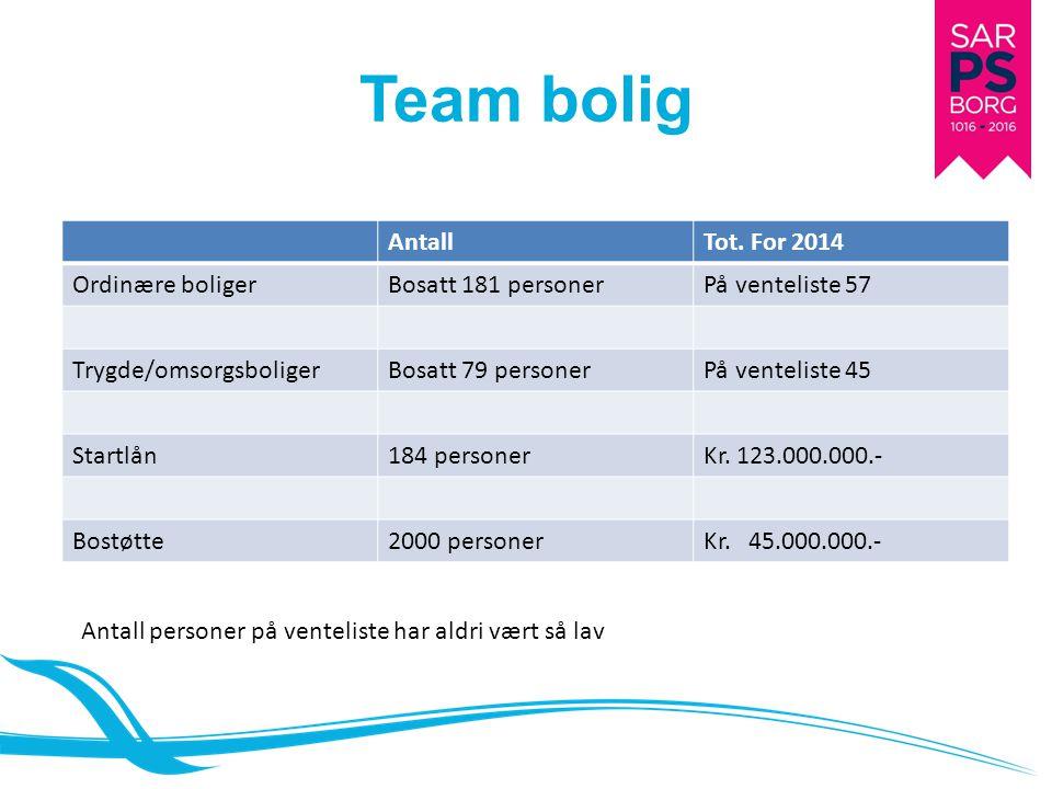 Team bolig AntallTot.