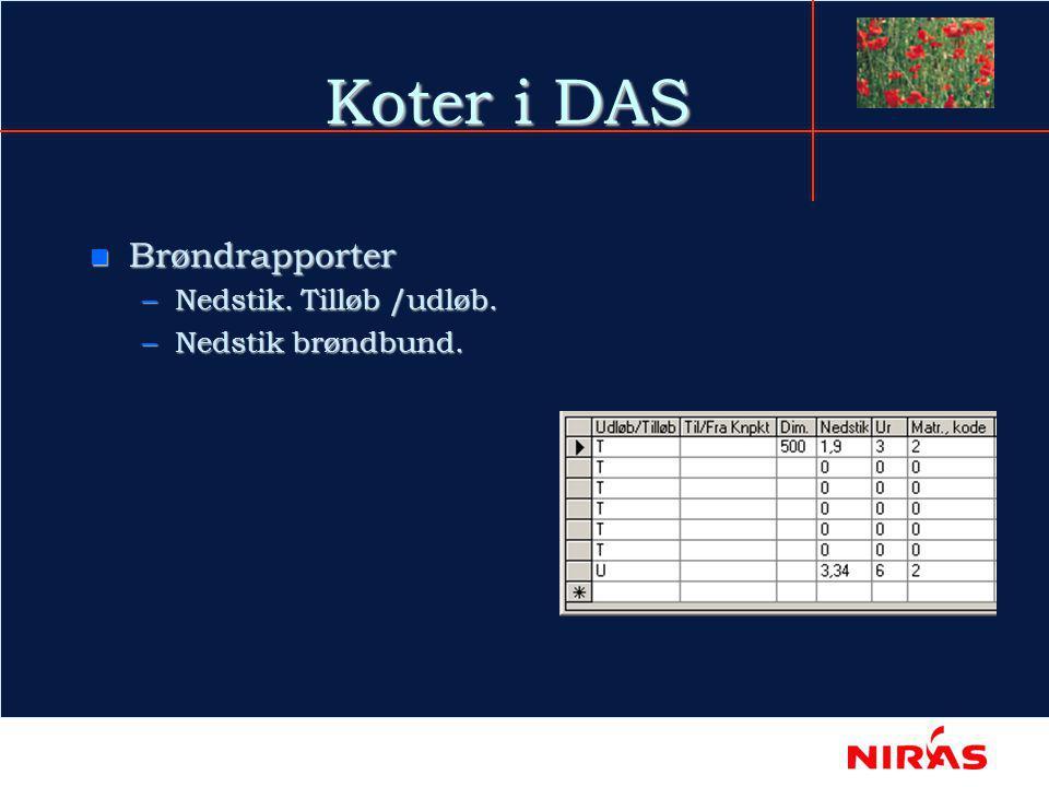 Koter i DAS n Brøndrapporter –Nedstik. Tilløb /udløb. –Nedstik brøndbund.