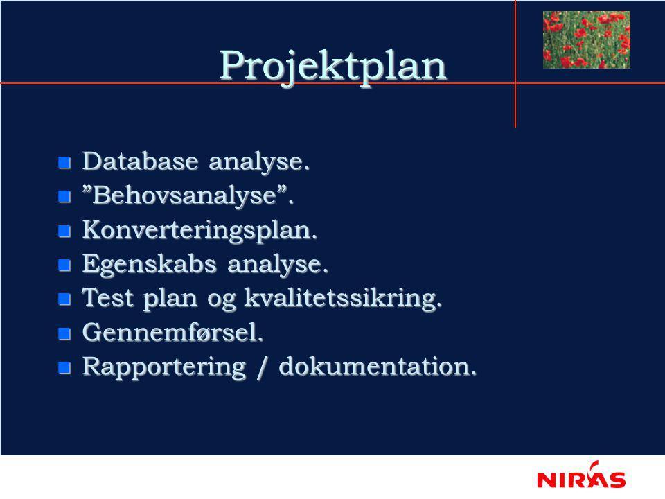 Projektplan n Database analyse. n Behovsanalyse .