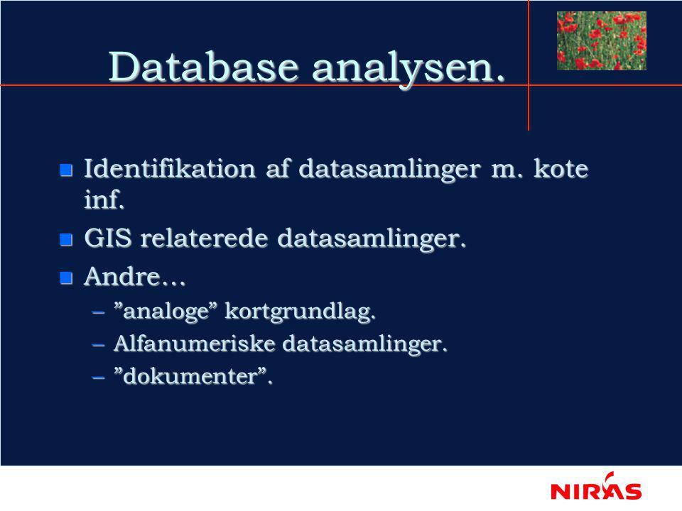 Database analysen. n Identifikation af datasamlinger m.