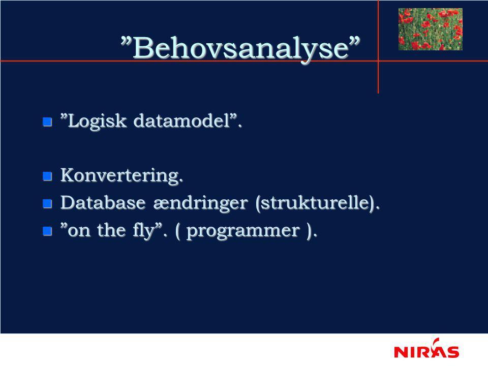 Behovsanalyse n Logisk datamodel . n Konvertering.