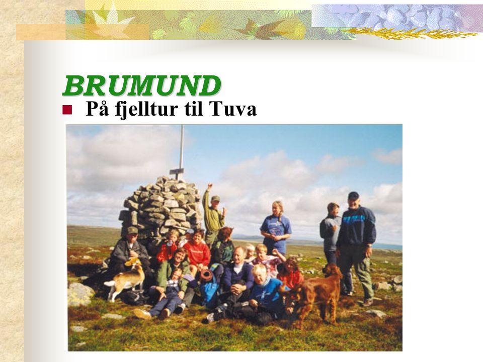 BRUMUND På fjelltur til Tuva