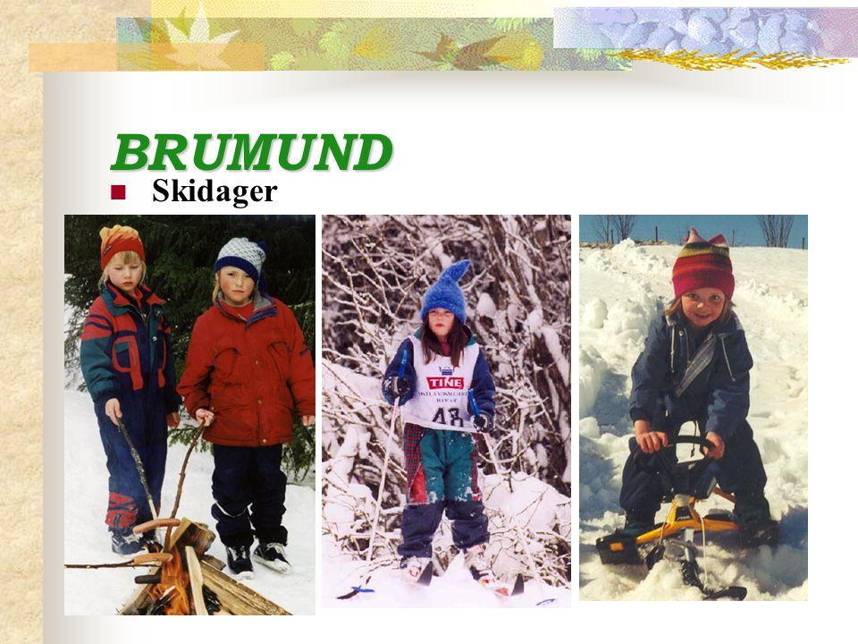 BRUMUND Skidager