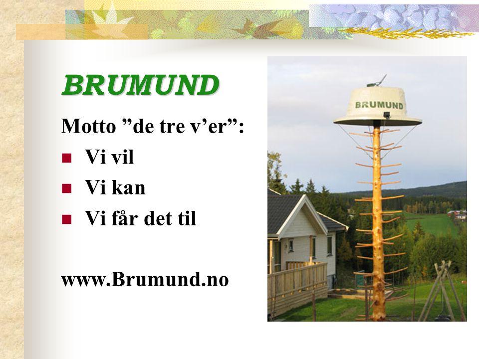 """BRUMUND Motto """"de tre v'er"""": Vi vil Vi kan Vi får det til www.Brumund.no"""