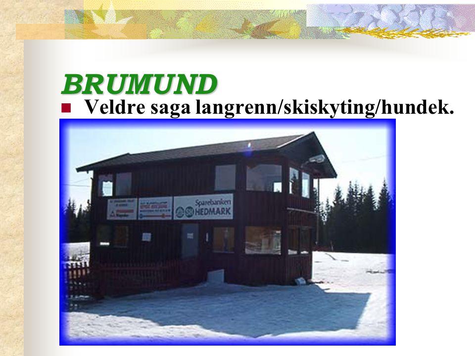 BRUMUND Dugnadsfest med han Brumund sjøl.