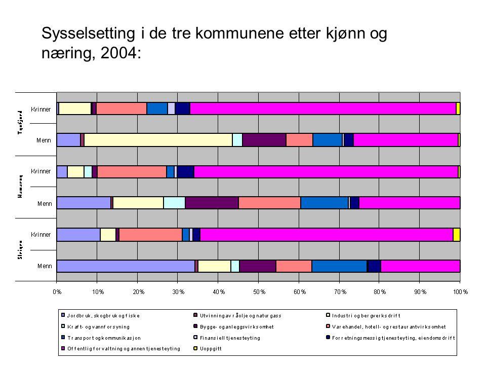 Sysselsetting i de tre kommunene etter kjønn og næring, 2004: