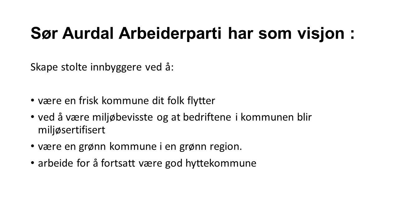 Sør Aurdal Arbeiderparti har som visjon : Skape stolte innbyggere ved å: være en frisk kommune dit folk flytter ved å være miljøbevisste og at bedriftene i kommunen blir miljøsertifisert være en grønn kommune i en grønn region.