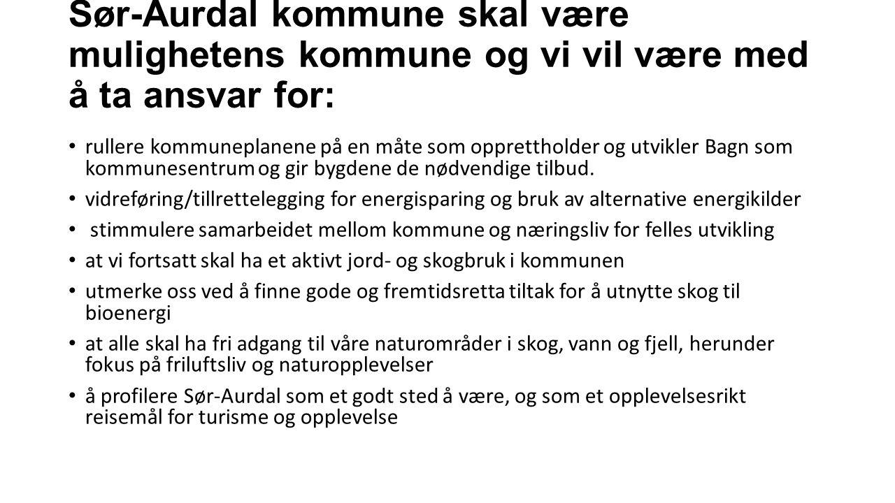 Sør-Aurdal kommune skal være mulighetens kommune og vi vil være med å ta ansvar for: rullere kommuneplanene på en måte som opprettholder og utvikler Bagn som kommunesentrum og gir bygdene de nødvendige tilbud.