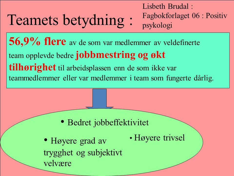 Teamets betydning : 56,9% flere av de som var medlemmer av veldefinerte team opplevde bedre jobbmestring og økt tilhørighet til arbeidsplassen enn de