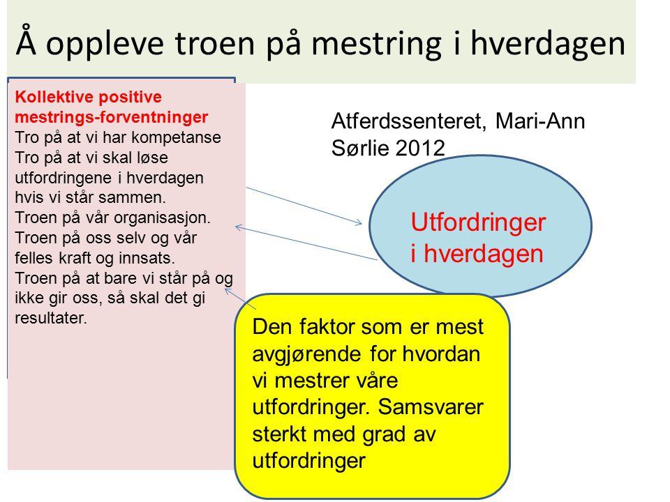 Å oppleve troen på mestring i hverdagen Atferdssenteret, Mari-Ann Sørlie 2012 Utfordringer i hverdagen Kollektive positive mestrings-forventninger Tro