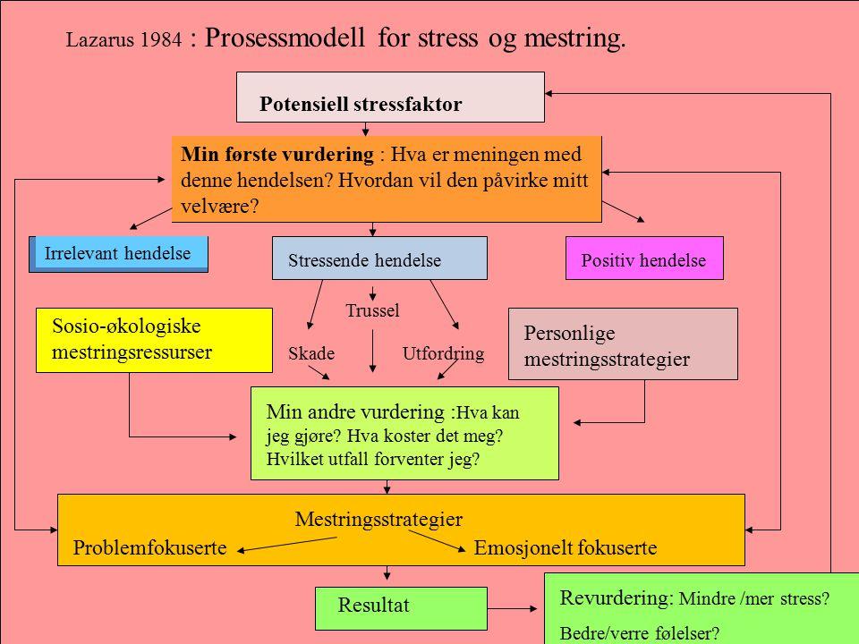 Lazarus 1984 : Prosessmodell for stress og mestring. Potensiell stressfaktor Min første vurdering : Hva er meningen med denne hendelsen? Hvordan vil d