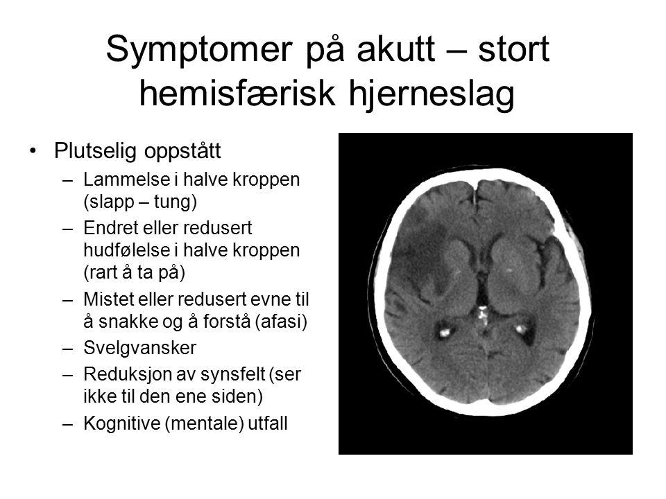 Symptomer på akutt – stort hemisfærisk hjerneslag Plutselig oppstått –Lammelse i halve kroppen (slapp – tung) –Endret eller redusert hudfølelse i halv