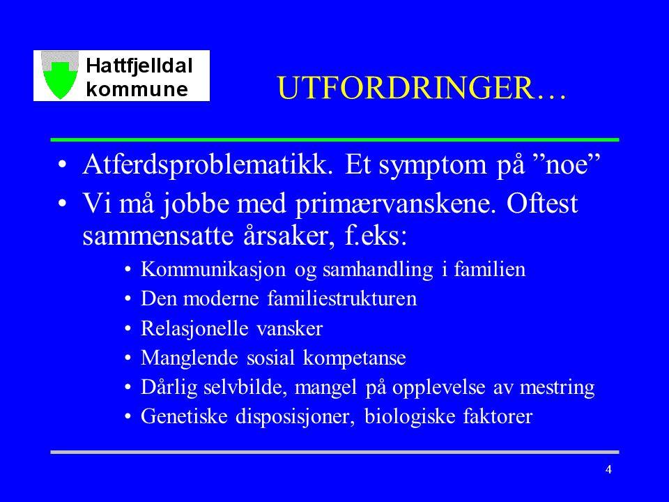 4 UTFORDRINGER… Atferdsproblematikk.Et symptom på noe Vi må jobbe med primærvanskene.