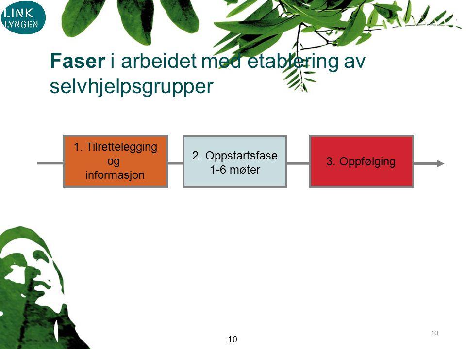 10 1. Tilrettelegging og informasjon 2. Oppstartsfase 1-6 møter 3.