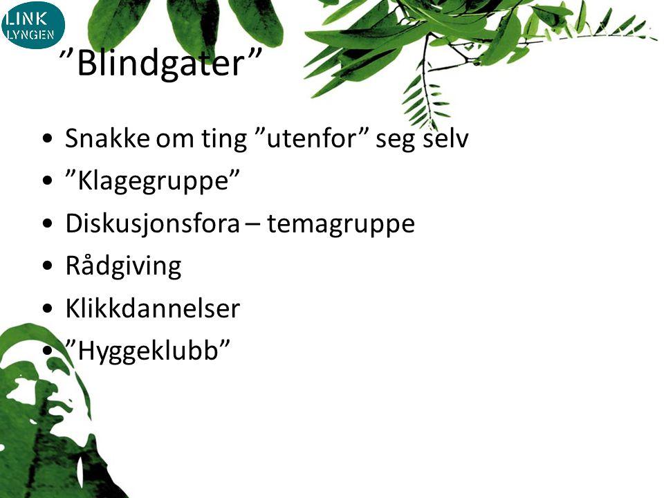 Blindgater Snakke om ting utenfor seg selv Klagegruppe Diskusjonsfora – temagruppe Rådgiving Klikkdannelser Hyggeklubb