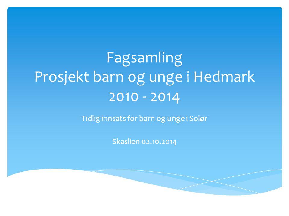 Fagsamling Prosjekt barn og unge i Hedmark 2010 - 2014 Tidlig innsats for barn og unge i Solør Skaslien 02.10.2014