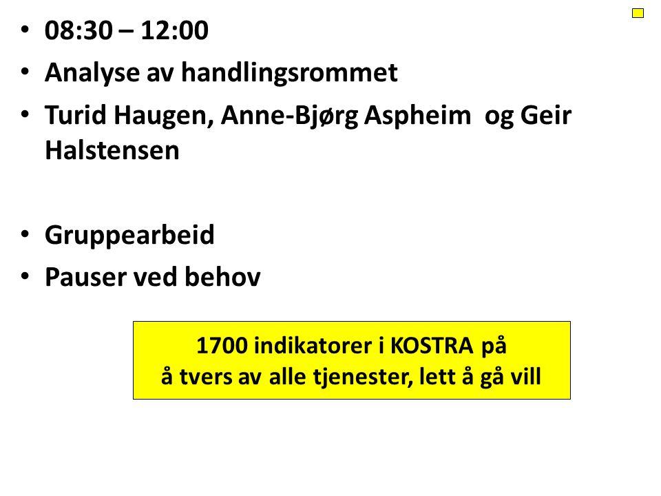 08:30 – 12:00 Analyse av handlingsrommet Turid Haugen, Anne-Bjørg Aspheim og Geir Halstensen Gruppearbeid Pauser ved behov 1700 indikatorer i KOSTRA p